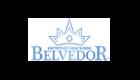 Промокоды Belvedor.com