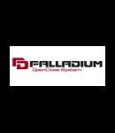 Купон Palladium